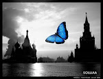 Eu amo borboletas.