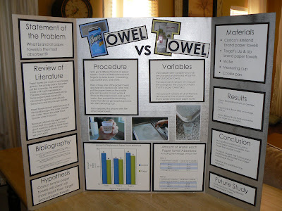 Science Fair Projects That Use Paper Towels