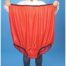 http://4.bp.blogspot.com/_F7oVbX-PFfw/TTSTzu6AK9I/AAAAAAAABDc/e71rVHyR2Yw/s1600/big+girl+panties.jpg