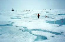 el ambiente glaciar