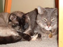 Tabor and Sierra