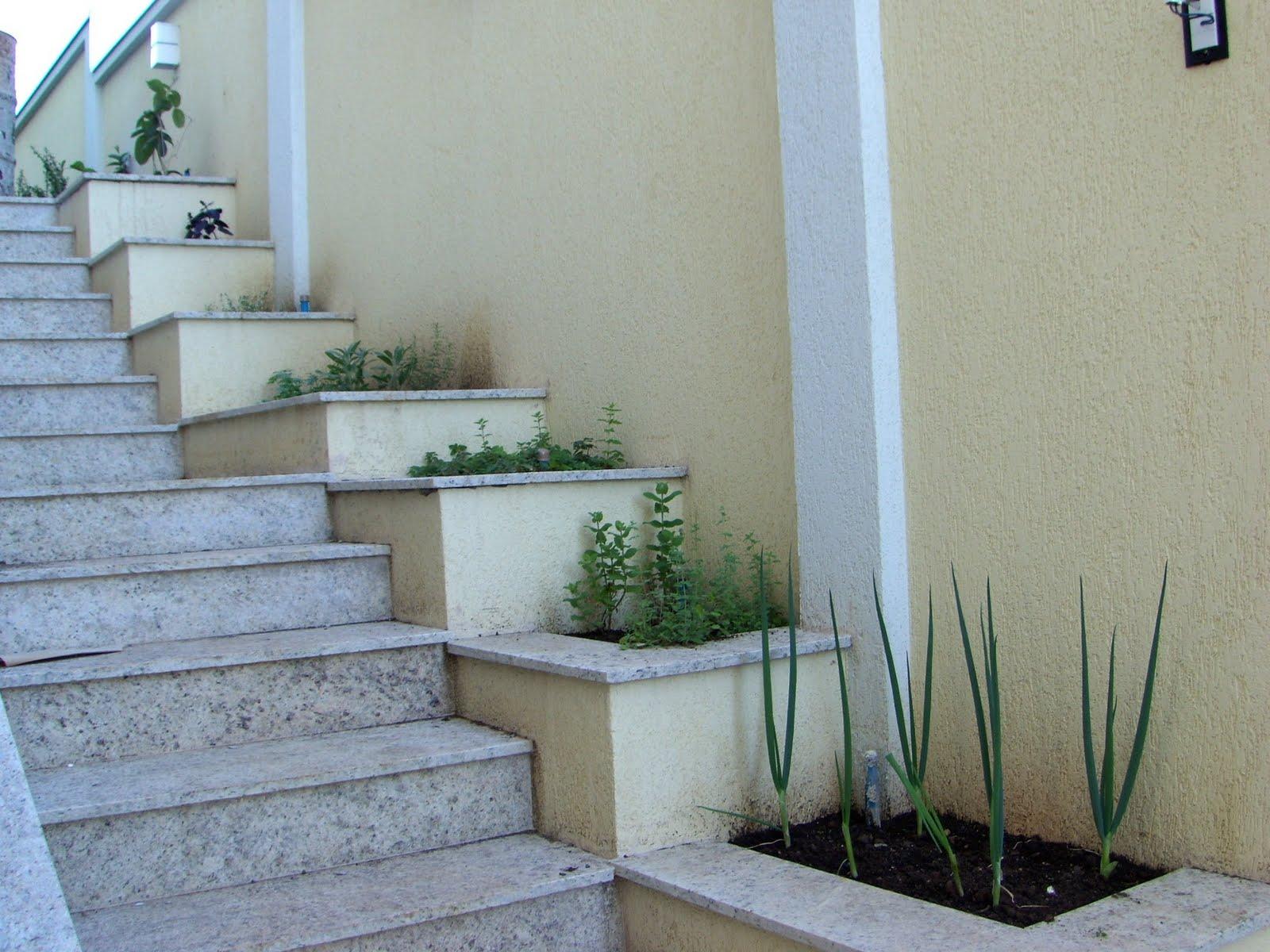 horta e jardim juntos:Mirian Decor: Pequenas Hortas