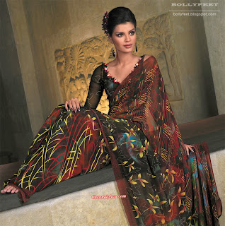 High Quality photo of Indian Model in Designer Saree