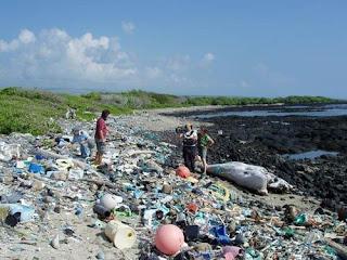 Descubren una máquina que transforma Plastico en Petróleo Plasticos+contaminacion