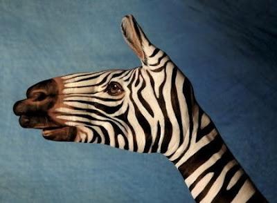 Gambar Lucu - Hand Painting - Funny Picture (Album 3)