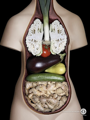 Fofo Lucu - Tubuh Anda Membutuhkan Sayuran