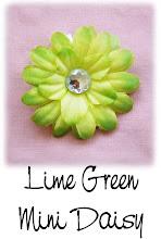 "2"" Lime Green Mini Daisy"