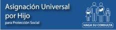 Consulta de datos ingresados en Anses para la Asignación Universal por Hijo