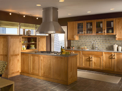 Interior Masco Retail Cabinet Group gold notes sensible style winning color combinations praline finish on putnam door pairs well with stainless appliances grey tops and flooring courtesy of masco retail cabinet group manuf