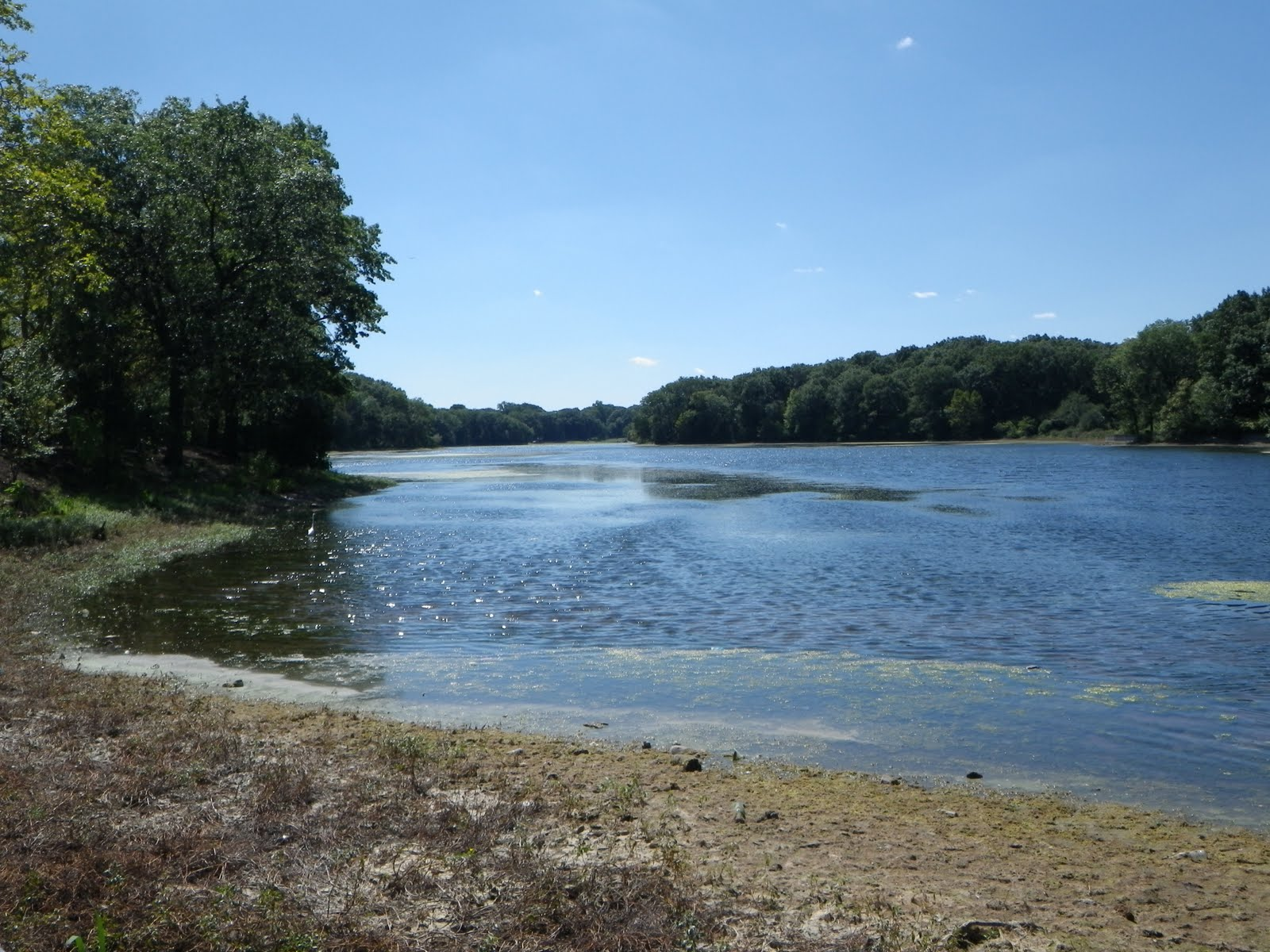 Great lakes nj for Nj fly fishing