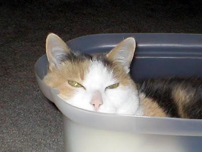 Trixi In Tub