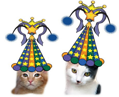 Party Hat Kittens
