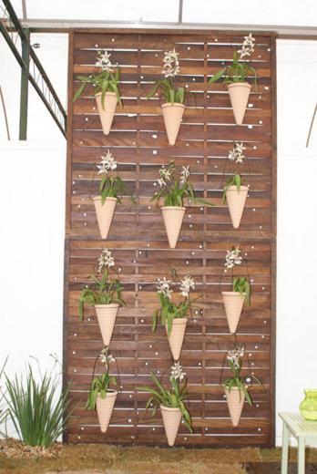 jardim vertical terraco:Este está no muro do quintal, mas pode ser perfeitamente adaptado
