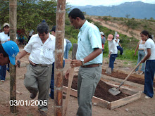Maestros trabajando en el proyecto