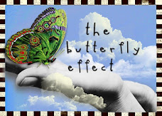 The Butterfly Effect Project