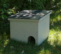 Feral Cat House