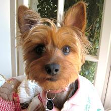lil' Ruby