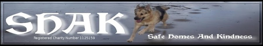 """It's A Dog's Life""..... SHAK (Safe Homes And Kindness)"