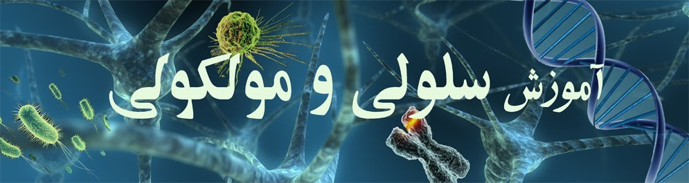 سلولی و مولکولی