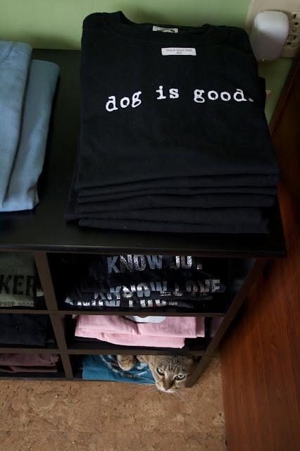 IMG 8633 Dog is Good