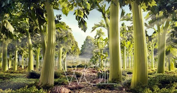 Celery forest - Carl Warner