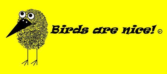 birds are nice