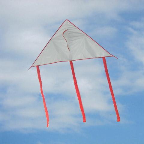 Fish Reel Repai... Delta Kite Diagram