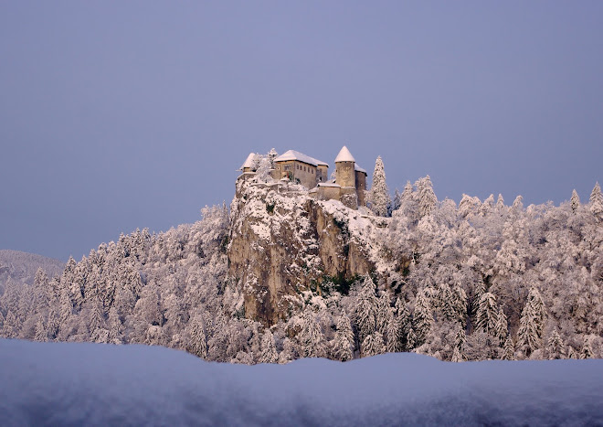 Blejski grad v jutranjem soncu
