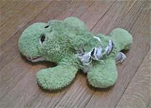 Froggie - Mar 10