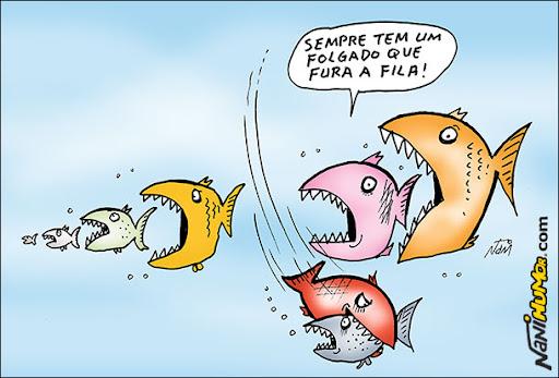 Cadeia-alimentar. Peixes