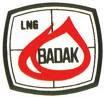 Lowongan kerja S1 Engineer, Mechanical, Electrical Engineering/Power PT. BADAK NGL Bontang, Kalimantan Timur