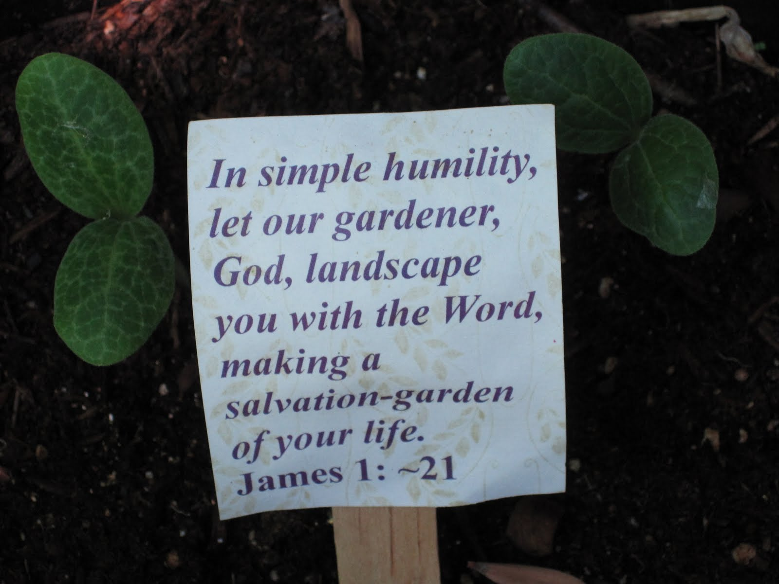 Eyes on christ garden related bible verses in simple humility let our gardener god landscape you with the word making a salvation garden of your life izmirmasajfo Gallery