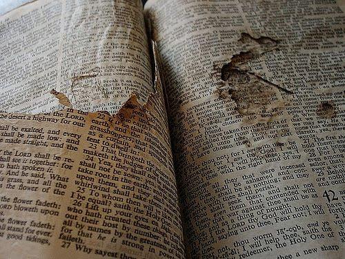 http://4.bp.blogspot.com/_FOIrYyQawGI/TETvnZwcVaI/AAAAAAAAC6o/ZuzNj87nrGI/s1600/BibleRipped.jpg