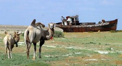 Aral Sea+ 09 788332 Gambar Laut Ke 4 Terbesar Dunia Yang Telah Hilang Tahun 2008