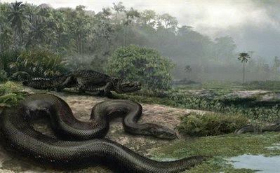 Animals: snake.
