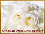 Blogs/Sites espiritualidade/religiões