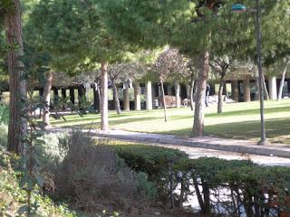 Arrecerats baix d'un pont a València