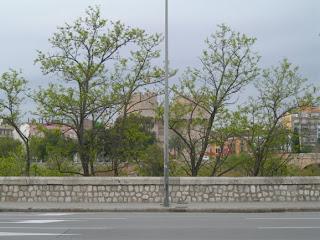 Resum electoral de València: la ciutat acaramullada.