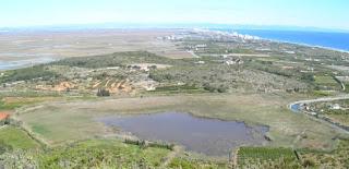 La bassa de Llorenç en Cullera
