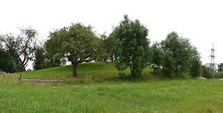 Grabhügel Lehenbühl bei Hundersingen / der Heuneburg