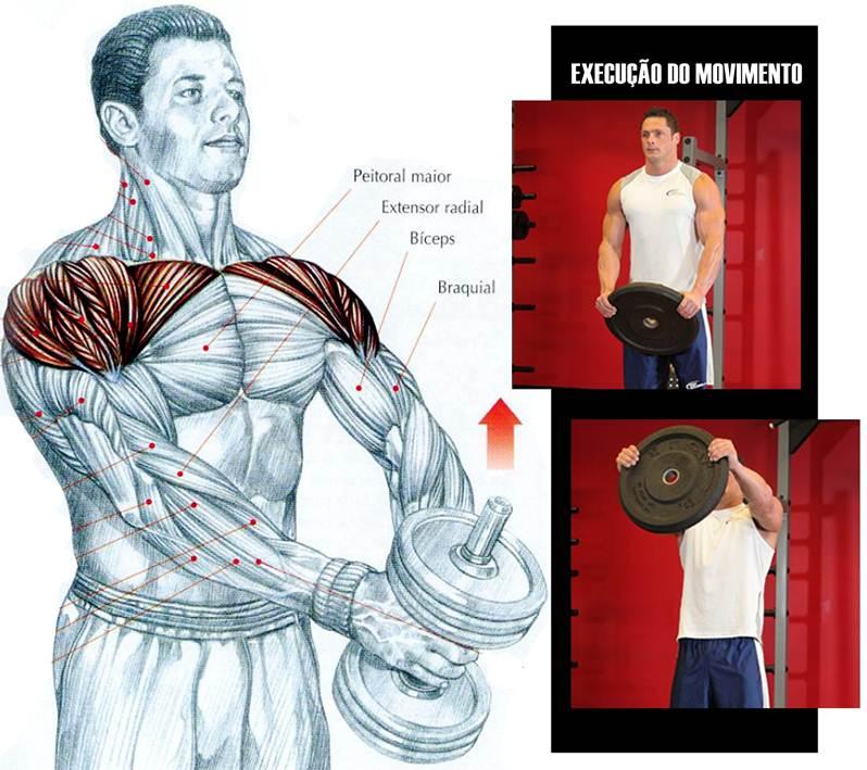 Excepcional Blog Corpo Perfeito: Os Melhores Exercícios para Ombros JD02
