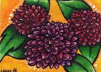 Dahlia by Melissa Muir