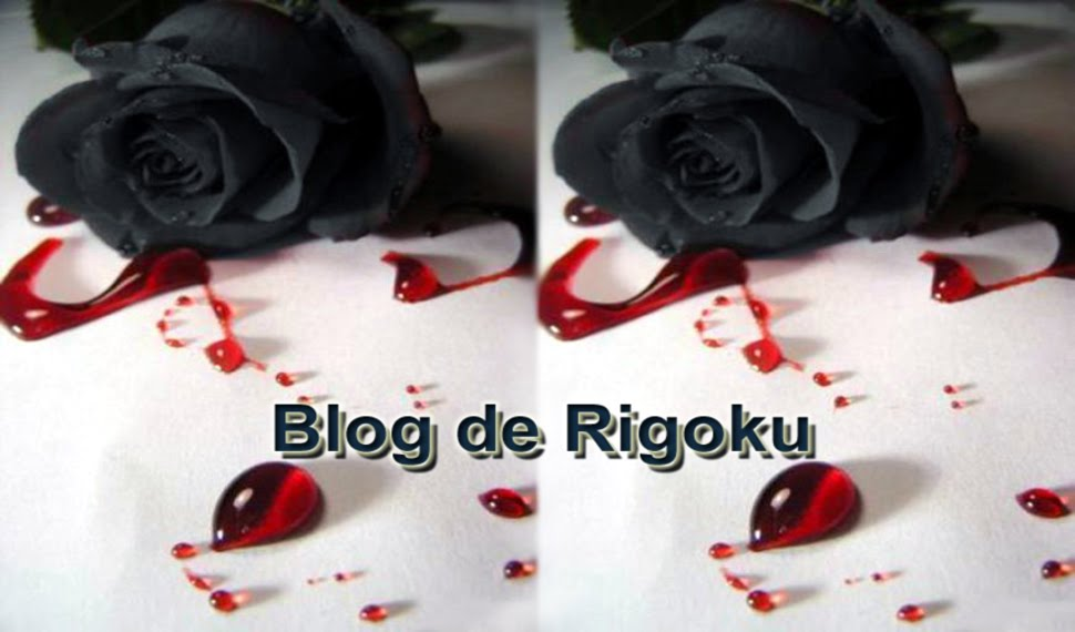 Blog de Rigoku