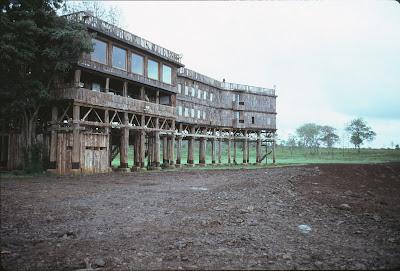 Treetops Lodge, Aberdares, Kenya