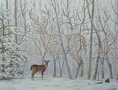 amazing illution paintings