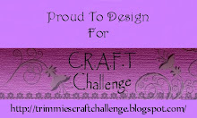Proud to be C.R.A.F.T Challenge blog Junior DT member