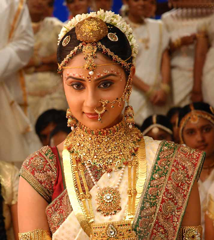 bhanusree mehra saree image in varudu movie