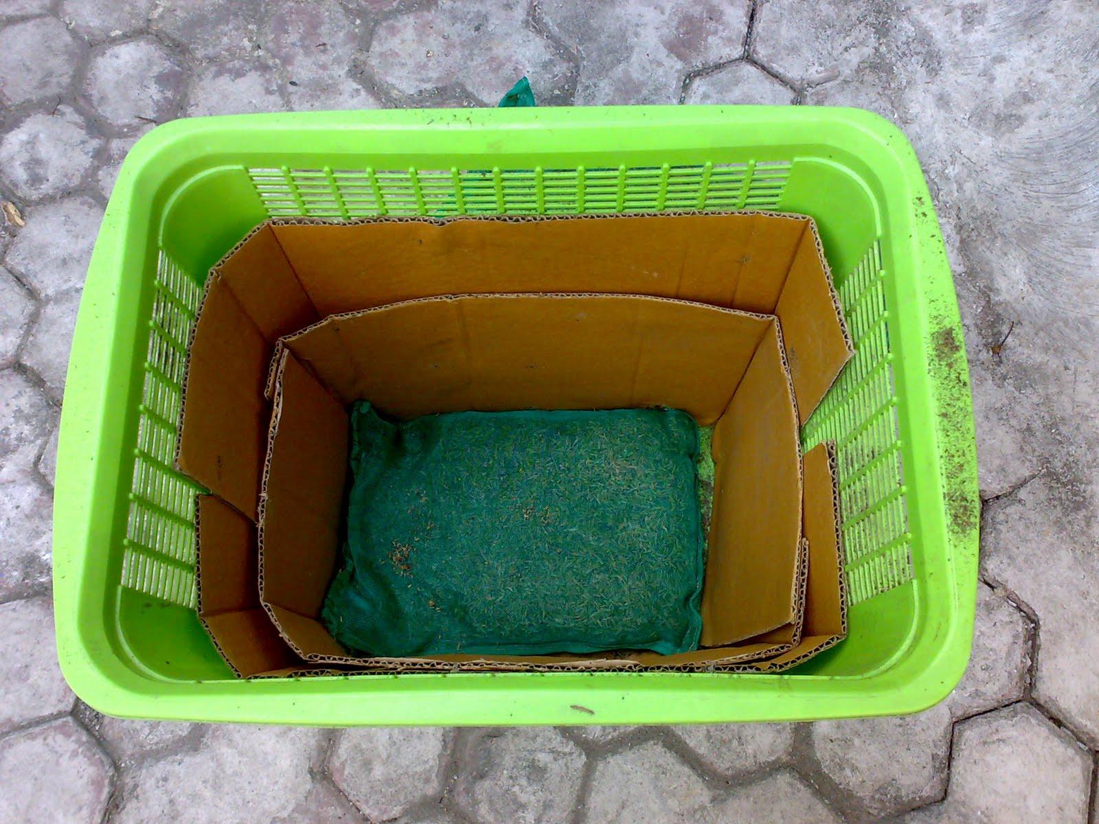 Cara Pembuatan Pupuk Kompos Organik
