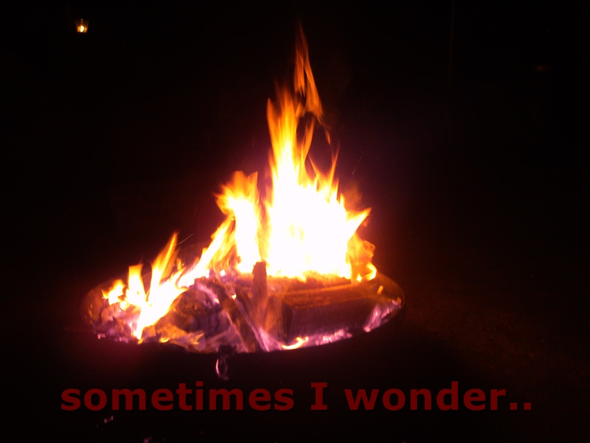 sometimes i wonder..