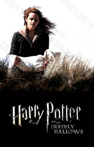 harry potter and the deathly hallows part 1 wallpaper. Deathly Hallows, Part 1.
